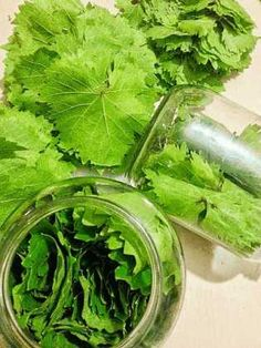 Greek Recipes, Soul Food, Good To Know, Celery, Spinach, Cabbage, Food And Drink, Cooking Recipes, Herbs