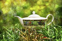 Tea in the garden by Ludmila SHUMILOVA