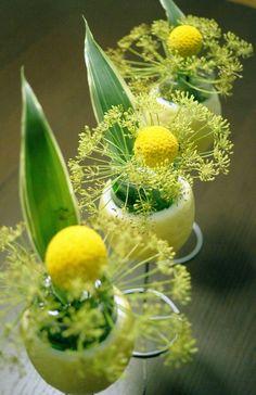 blooming in a lemon
