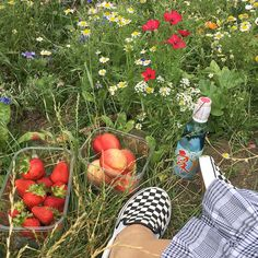 UUHHHH I was gonna post another pic of me in that dreaded denim jacket but i am BOTHERED by the lack of colourful pictures I post so : This is a field me and engy sat by and it looks rlly calm and serene but in real life I was DEAD ASS KILLING myself bc of how many wasps there were , they want me dead and I hate them