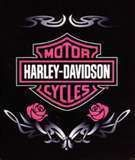 Girly Harley Davidsons. Men who ride Harleys like girls who ride Harleys. That's my story and I'm sticking to it!