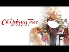 A warm-hearted Christmas tale to remind us that in the holiday season, the best gifts in life are the simple ones, and that miracles do happen, if you believ. Free Christmas Movies, Christmas Videos, Christmas Tale, Holiday Movies, Christmas Program, Great Movies To Watch, Good Movies, Miracles Do Happen, Popcorn Times