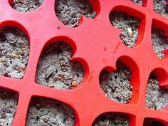 DIY seed bombs using newspaper and flexible silicon muffin molds