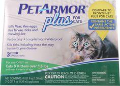 PetArmor For Cats New Kill fleas flea eggs flea larvae ticks chewing lice Flea Treatment, Flea Meds, Killing Fleas, Frontline Plus For Cats, Tick Control, Thing 1, Cat Fleas