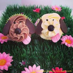 Puppy dog cupcakes from Sweeter than Sugar Sugar Cookie Cakes, Cupcake Cakes, Puppy Dog Cupcakes, Puppy Birthday, 2nd Birthday, Birthday Ideas, National Cupcake Day, Muffins, Cupcake Heaven