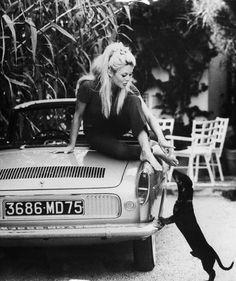 Brigitte Bardot, 1960's, on a convertible with a dachshund.