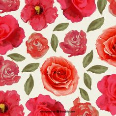 Hand painted red flowers Free Vector
