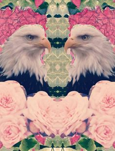#bird #eagle #art #collage #rose #roses #grunge #softgrunge #graphic #graphicart #trippy #psychedelic #psychedelicart Psychedelic Art, Soft Grunge, Lamb, Graphic Art, Photo Editing, Owl, Collage, Deviantart, Bird
