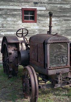 The Old Mule Photograph - The Old Mule Fine Art Print