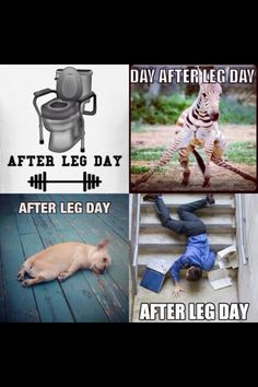 Leg day at the #gym! I always feel it within 24 hours! #fitnessmotivation!