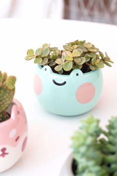 Ebbo Plant Pot is made out of ceramic with Ebbo printed on a light green base. Perfect for small plants and succulents! x 3 in. Cute Crafts, Diy Crafts, Decor Crafts, Ceramic Plant Pots, Ceramic Bowls, Ceramic Art, Kawaii Room, Frog And Toad, Frog Frog
