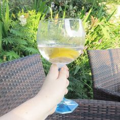 I'm quite enjoying some alcoholic bevs on this holiday which is something I never normally do  not a fan of gin and tonic unfortunately despite this very Insta worthy photo courtesy of my great uncle and aunt's back garden