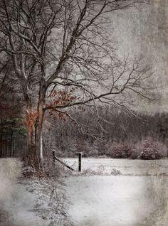 *<3 a beautiful wintr landscape ... <3