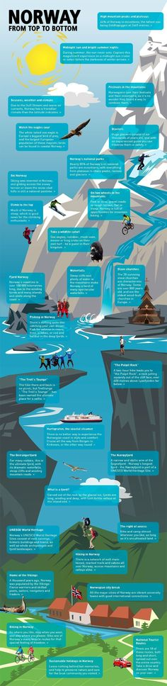 I like the mountain affect with this infographic. It makes me want to read the information in order. - Sam