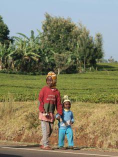 Kenya East African Rift, East African Community, African Culture, The Republic, Uganda, Kenya, Beautiful