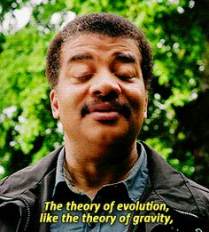 The theory of evolution, like the theory of gravity, is a scientific fact. Evolution really happened. Accepting our kinship with all life on Earth is not only solid science... in my view, it's also a soaring spiritual experience. | Neil deGrasse Tyson | Co