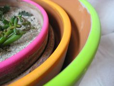 diy neon terracotta pots from on my honor