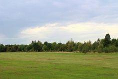 grass lawn in Alton Park