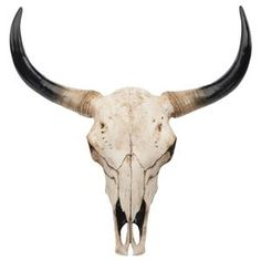 1000 images about taureau on pinterest pablo picasso the bull and taurus. Black Bedroom Furniture Sets. Home Design Ideas