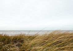 Dunes Photography Print from Artifax