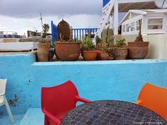 Teal on a terrace in Essaouira! Coco - Morocco
