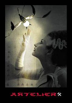 belindas wunderkammer: fotografia