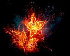 A VOZ DA SELVA AMAZÔNICA: A  CASA  MAL  ASSOMBRADA  XXVIII Luzes vermelhas como de fogo começaram a ser refletidas dentro daquele caixão de gelo, era como se elas tivessem vida própria...