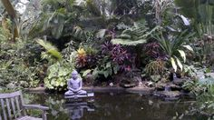 I took this pic at the Botanical Gardens in Sarasota Florida. So peaceful there. If your ever in Sarasota you should check it out it runs along the bay.