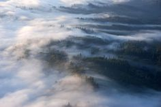 Morning Fog by rheros, via Flickr