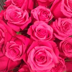 Pretty #pink #roses can brighten any day.