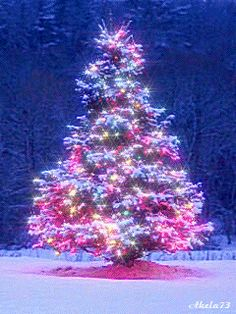 ╰☆╮Christmas ~ CLICK ON THE PICTURE AN WATCH IT COME TO LIFE. *.♡♥♡♥Love★it