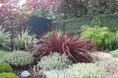 ... Landscapedesign.co.nz...