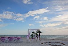 Why have a beach wedding in Florida crafted for you by Suncoast Weddings? Oh ... that's why!