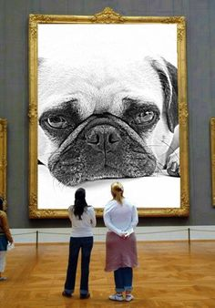 Home of Global Pug Domination - Join The Pugs - Visit us for unstoppable cuteness. Adorable pug and pug puppy cuteness are always featured on Join the Pugs. Amor Pug, Pug Art, Cute Pugs, Funny Pugs, Carlin, Black Pug, Pug Puppies, Pug Love, Cute Animals
