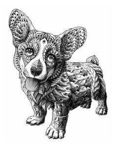 Zentangle corgie puppy