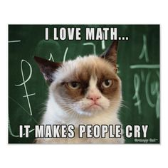 """Siamese Cats Applehead Grumpy Cat Poster- I love math it makes people cry - This was made by request for all the math teachers out there! Features the original Grumpy Cat photo over a chalk board with the caption """"I love math. It makes people cry. Grumpy Cat Quotes, Funny Grumpy Cat Memes, Funny Animal Jokes, Funny Animal Pictures, Cute Funny Animals, Animal Memes, Cute Cats, Funny Cats, Funny Memes"""