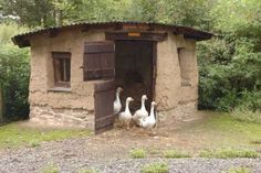 Cute little cob barn house for the geese and ducks.