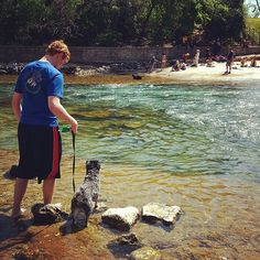 Luna liked the water a little more than we expected! #latergram #atx #adventures #lbloggers #dogsofinstagram #liveauthentic #bartonsprings #schnauzer #family
