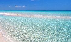 porto cesareo Beach, Water, Outdoor, Porto, Gripe Water, Outdoors, The Beach, Beaches, Outdoor Games