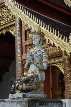 Explore elvina24's photos on Flickr. Chiang Mai Thailand