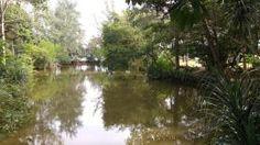 Thailand, Koh Lanta Nationalpark