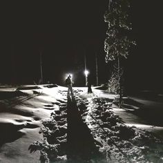 Beyond City Lights - Experience darkness and the silence of the Lappish winter! Snowy Forest, Local Companies, Dark Night, City Lights, Winter Time, Night Skies, Darkness, Paths, Stuff To Do