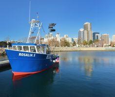 Lobster Fishing in San Diego