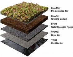 Xero Flor America (XFA), the exclusive U. distributor of the Xero Flor Green Roof System, announced that Xero Flor won a 2013 Readers' Choice Award from Environmental Design + Construction in the commercial roofing products category. Roof Repair Cost, Roof Storage, Green Roof System, Steel Roofing, Tin Roofing, Roofing Shingles, Modern Roofing, Living Roofs, Slate Roof