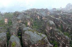 Auyantepui, Canaima National Park, Gran Sabana, Bolivar, Venezuela