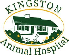 South Shore MA Veterinarians and Staff | Kingston Animal Hospital-See pictures of our staff in action!
