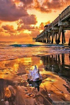bb4f393837 79 best Amazing Sunrise