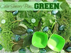And Next Comes L: Color Sensory Bins: Green