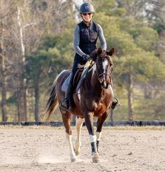 What is something that immediately makes you a little anxious when you're riding? A certain noise, a car passing, a horse leaving, snow… What Is Something, Anxious, Equestrian, Snow, Horses, Lifestyle, Car, Animals, Automobile