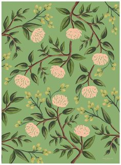 Rifle Paper Emerald Peonies Wrapping Sheets, 3 Sheets, Rolled - Free Shipping